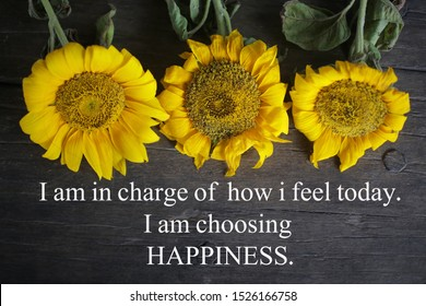 Inspirational motivational quote - I am in charge of how i feel today. I am choosing happiness. With yellow sun flowers on rustic wooden table background. Words of wisdom concept on natural board.