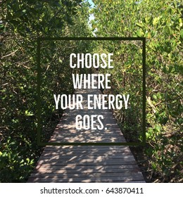 """Inspirational motivational quote """"Choose where your energy goes"""" on wooden walkway with green leaves background."""
