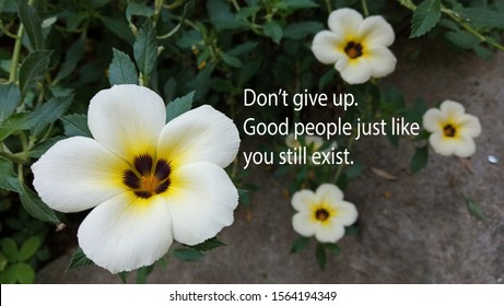 Inspirational motivational quote - Do not give up. Good people just like you still exist. With nature background of beautiful white wildflower blossom and grow in garden.