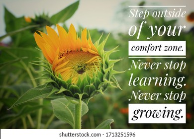 Inspirational motivational quote - Step outside of your comfort zone. Never stop learning. Never stop growing. With sunflower blossom and  growth on a green background as a life process illustration.