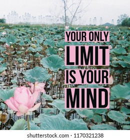 """Inspirational Motivational quote """"your only limit is your mind."""" on water lily pond background."""
