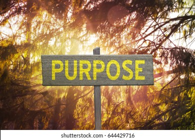 Inspirational Purpose sign on forest nature background