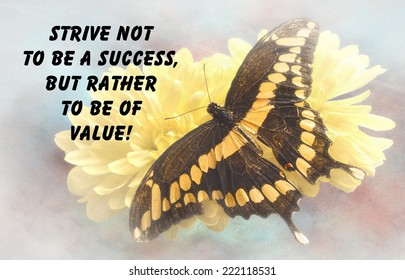 Inspirational quote about life and love, with a beautiful Giant Swallowtail  Butterfly  on a textured background