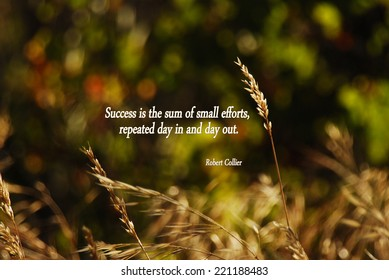 An inspirational quote about success by Robert Collier.