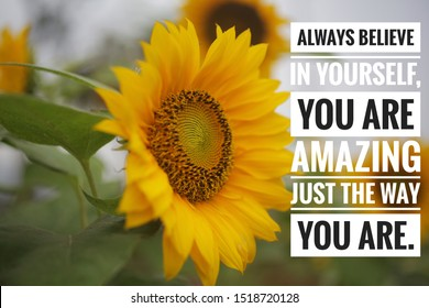 Inspirational  quote - always believe in yourself. You are amazing just the way you are. With beautiful smiling sunflower blossom welcoming new day background.