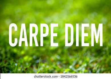 Inspirational quote carpe diem (seize the day) written on green grass garden background.