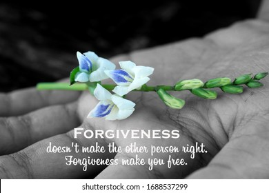 Inspirational quote - Forgiveness, does not make the other person right. Forgiveness make you free. With white flower plant in hand on black and white abstract art background.