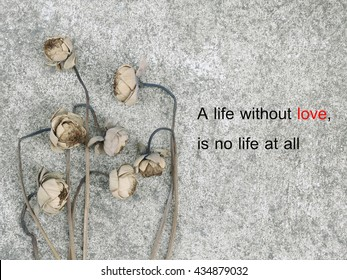 Inspirational quote, A life without love, is no life at all quote on  background