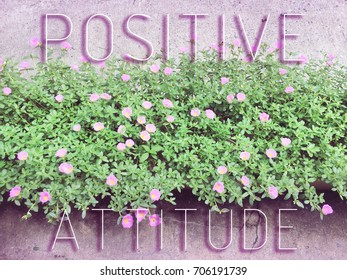 Inspirational quote on flower background with copy space.