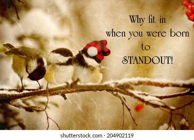 Inspirational quote on individuality by Dr. Suess with a grunge textured image of a special little chickadee wearing his Christmas hat, standing out in the crowd.