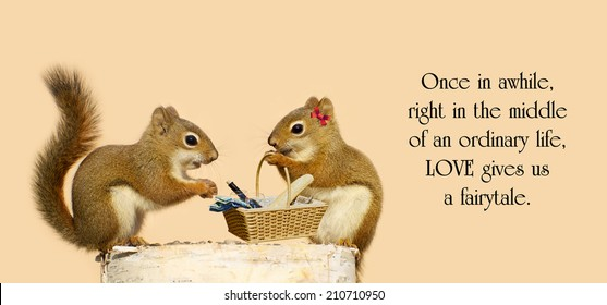 Inspirational quote on life by an unknown author with a pair of squirrels in love with a picnic basket.