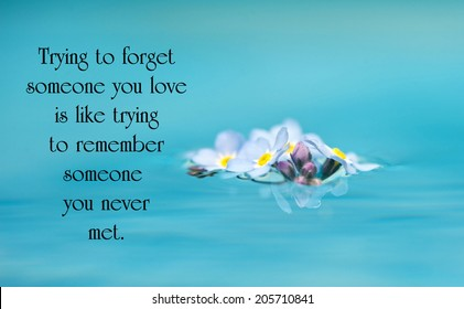 Inspirational quote on love by an unknown author with beautiful forget me not flowers floating on water.