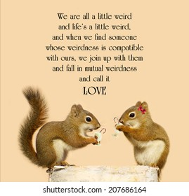 Inspirational quote on love by Dr. Suess with a cute pair of squirrels in love, enjoying some eggnog at Christmas time.