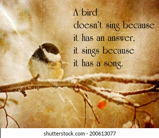Inspirational quote on nature by Maya Angelo with an antitique textured image of a little chickadee perched on a branch in winter.