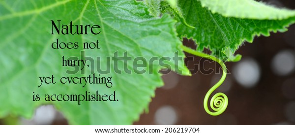 inspirational quote on nature by loa nature abstract stock image