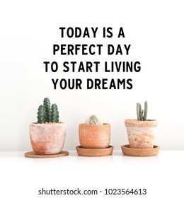 "Inspirational quote ""Today is a perfect day to start living your dreams"". Cactus in clay pots over white background"