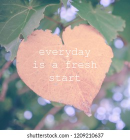 Inspirational quotes on nature background. Everyday is a fresh start
