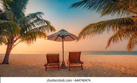 Inspirational tropical beach, palm trees and white sand. Tranquil scenery, relaxing beach, tropical landscape design.