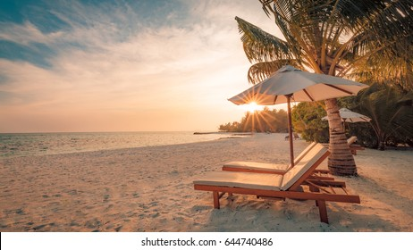 Inspirational tropical beach, palm trees and white sand. Tranquil beach.