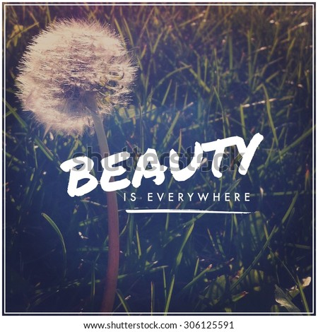 Inspirational Typographic Quote Beauty Everywhere Stock Photo Edit