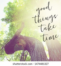 Inspirational Typographic Quote - Good things take time