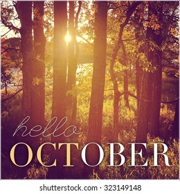 Inspirational Typographic Quote   Hello October