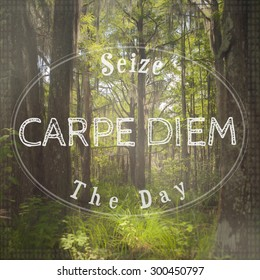 Inspirational Typographic Quote - Seize The Day, Carpe Diem