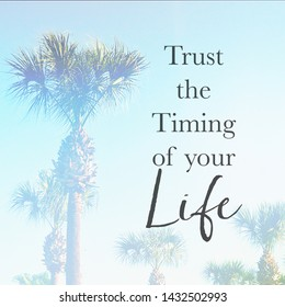 Inspirational Typographic Quote - Trust the timing of your life - with palm trees in background
