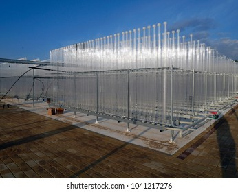 installation of the plant on the technology of growing algae in small bioreactors