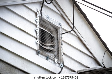 Installation of wire mesh grate over bent slats of home attic vent showing signs of rodent entry and infestation.