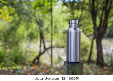 Insulated Stainless Steel Bottle in the forest