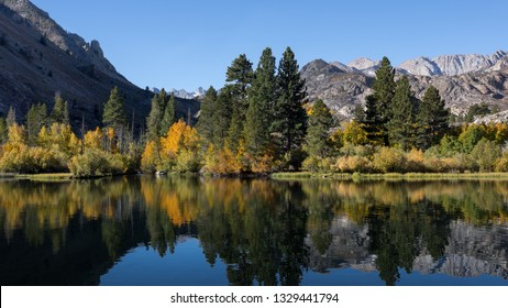 Intake lake during fall colors. Trees are a colorful yellow and gold. Bishop California