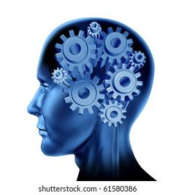 intelligence brain function isolated