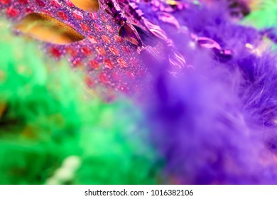 Intense color -Mardi Gras - Carnaval background in purple and green - blurred feathers and a mask on gold background