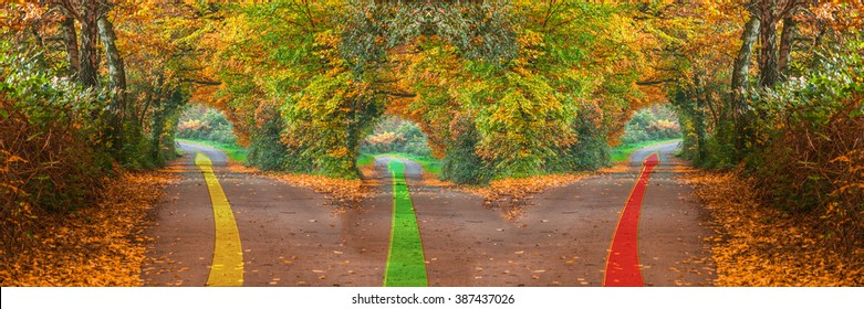 Intentional blur; Photoshop editing;Forest road in the fall with three different ways.