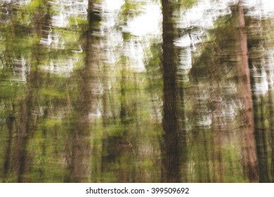 Intentional Camera Movement Abstract Forest