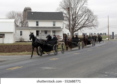 INTERCOURSE, PENNSYLVANIA - MONDAY, DECEMBER 26, 2016: Amish families drive their horse and buggies down a county road in Lancaster County, Pennsylvania.
