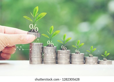 Interest rate up and Banking concept, Plant growing on stack of coins money on natural green background
