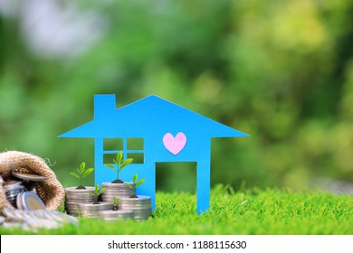 Interest rates, Growing plant on stack of coins money and blue house on natural green background, Business investment and real estate concept