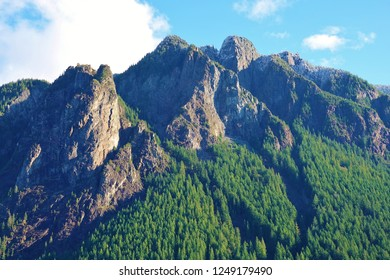 Interesting contrast & beauty on mountainside in WA. Most of upper mountain is rocky & craggy but a large evergreen tree forest is growing on mountainside & nearing the top. Blue sky white clouds.