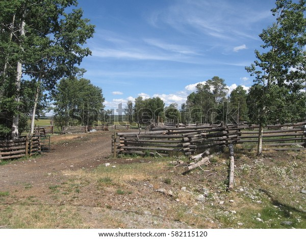 Interesting drift fences prevent livestock from roaming around the famous Chilcotin plateau in British Columbia, Canada