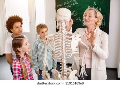 Interesting lesson. Delighted smart teacher pointing at the skeleton while speaking about human bones
