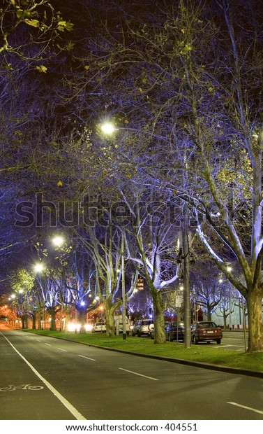 Interesting lighting looking up the trees in the streets at night. Long exposure used. No modifications whatsoever.