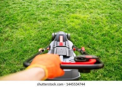 The interesting point of view from a man pushing a lawn mower. Lawn mower mowing green grass.