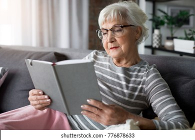 Interesting retirement. Portrait of aged curious woman reading book. She is holding volume while relaxing on comfortable couch with soft pillows