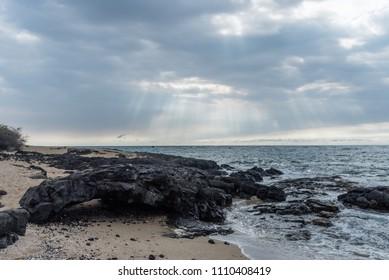 Interesting rock at the beach along the Kohala coast on the Big Island of Hawaii