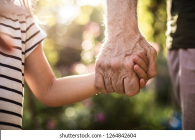 Intergenerational connection. Close up photo of child hand holding his elderly grandfather in summer outside