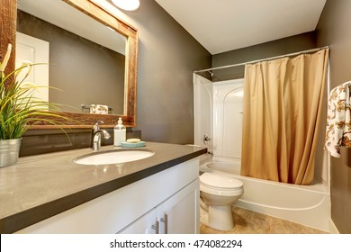 Interior of bathroom . Grey walls with white bathroom appliances. Has full bath shower with beige curtain, toilet and vanity cabinet. Northwest, USA