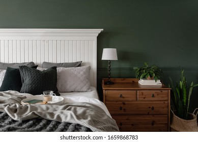 Interior bedroom with green wall, plants and copy space