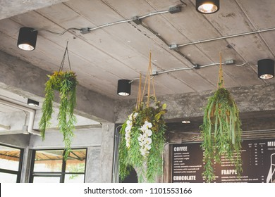 The interior of the coffee shop with fern and various plants and light bulb glass.